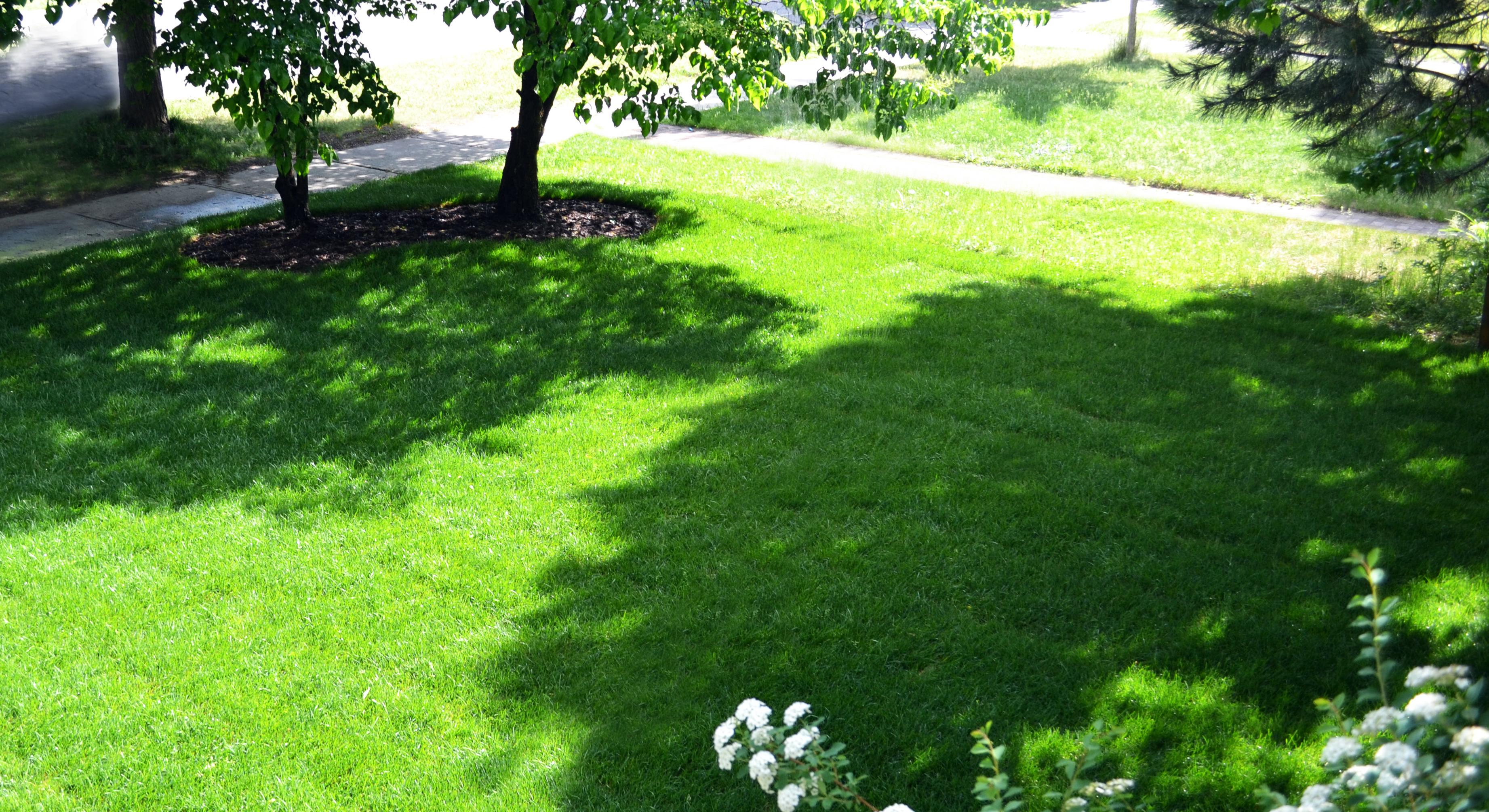 Smith-lawn-slide
